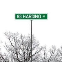 93 Harding, Picture