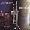 Jeff Elliott, CD titled, Different Jungles