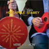 Peter Holsapple And Chris Stamey, CD titled, Here and Now