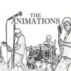 The Animations, Picture