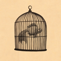 Fish In A Birdcage, CD titled, Fish In A Birdcage EP