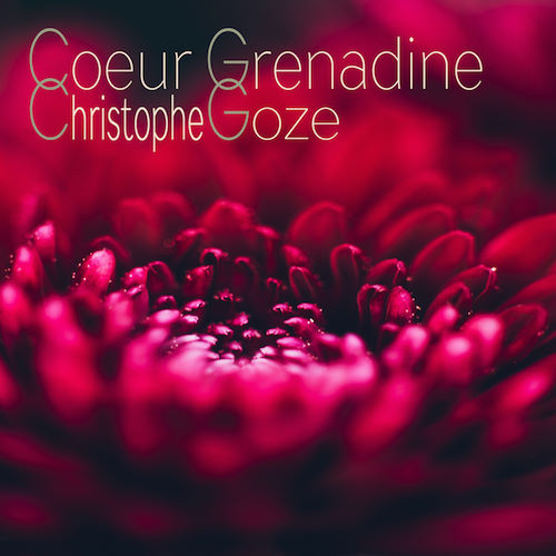 Christophe Goze, song titled, Coeur Grenadine