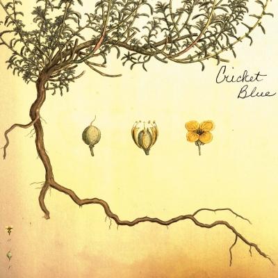 Cricket Blue, CD titled, Cricket Blue