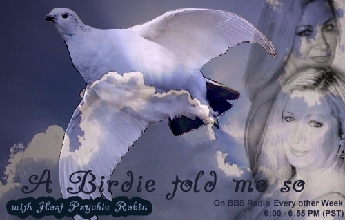 A Birdie told me so... with Robin Hoffmann, banner