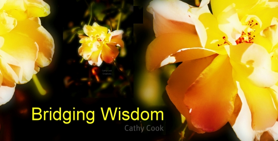 Bridging Wisdom with Cathy Cook, banner