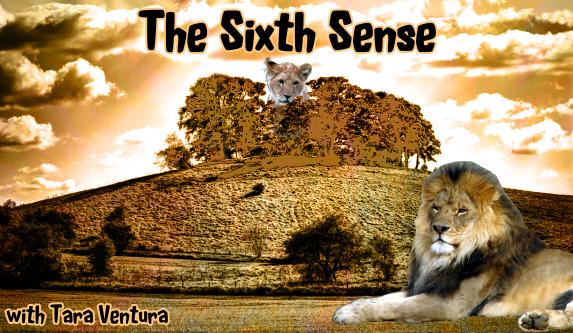 The Sixth Sense with Tara Ventura