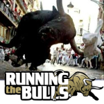 Steve Berrey, Running the Bulls image