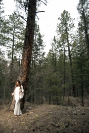 Kimberly Webber forest white magic photograph by Missy Wolf