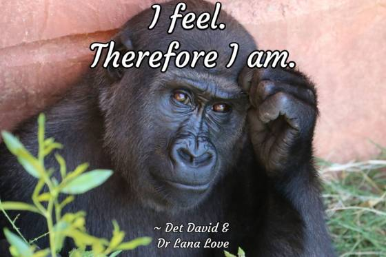 Universal Soul Love Quote - I feel. Therefore I am.