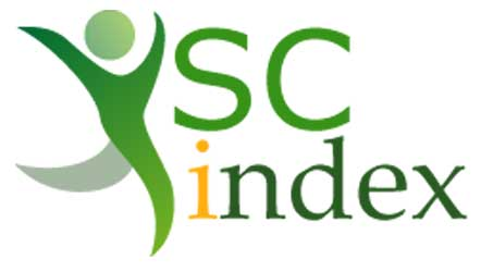 YSC Index