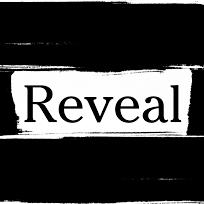 Reveal News logo