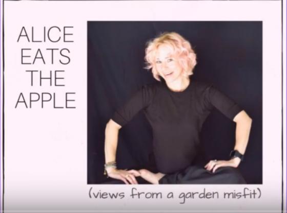 Kerry Walker Alice Eats the Apple
