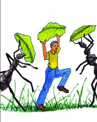 Dances with Ants & Natural and Organic Ant Control