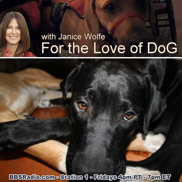 For the Love of Dog with Janice Wolfe