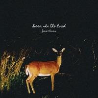 Deer in the Road - Jane Honor