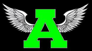 Acceleration Pro logo