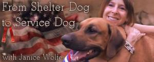 From Shelter Dog to Service Dog with Janice Wolfe