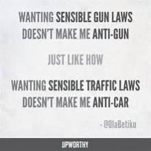 WE THE PEOPLE FOR SENSIBLE GUN LAWS