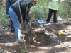 First excavation of Indian residential school children's bones, Brantford, Ontario, October 2011 (Archives of the ITCCS and Mohawk elders)
