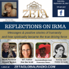 Reflections on Irma