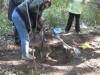 Mohawk elder Bill Squire and ITCCS members dig for childrens' remains at Brantford Anglican Indian school, 2011