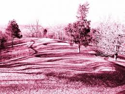 The Power of Manifestation, Energy, and The Great Serpent Mound
