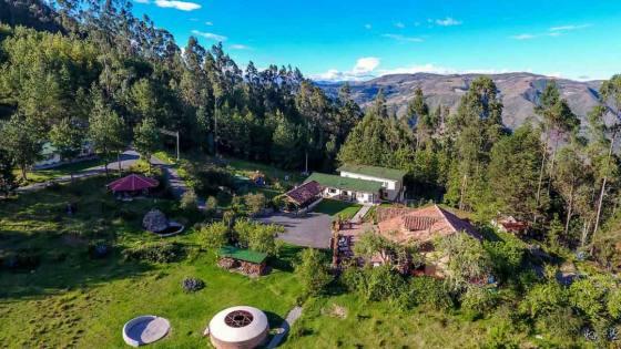 Gaia Sagrada, Shamanic Retreats with Ayahuasca & San Pedro