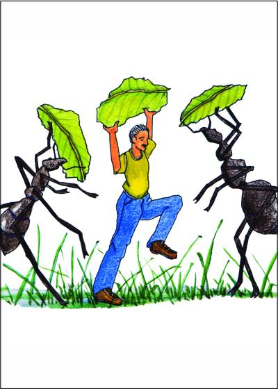 Got Ants? Listen to Dances with Ants